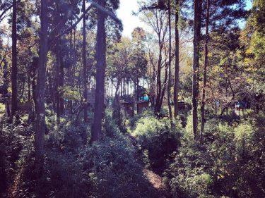 自然を感じる千葉県の森林系サバゲーフィールド15選