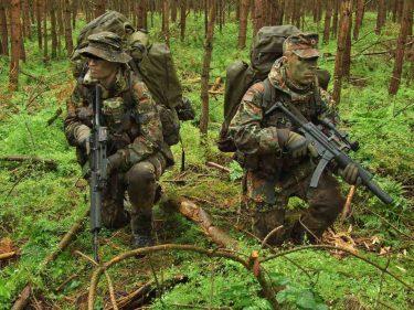 Flecktarn(フレックターン)|ドイツ連邦軍の迷彩は自衛隊も参考に