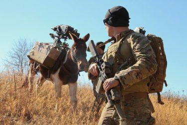 アフガニスタンでグリーンベレーが待ち伏せ攻撃を受け複数の死傷者