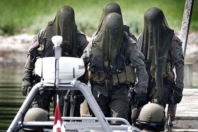 フロッグマン|デンマークの水中特殊部隊