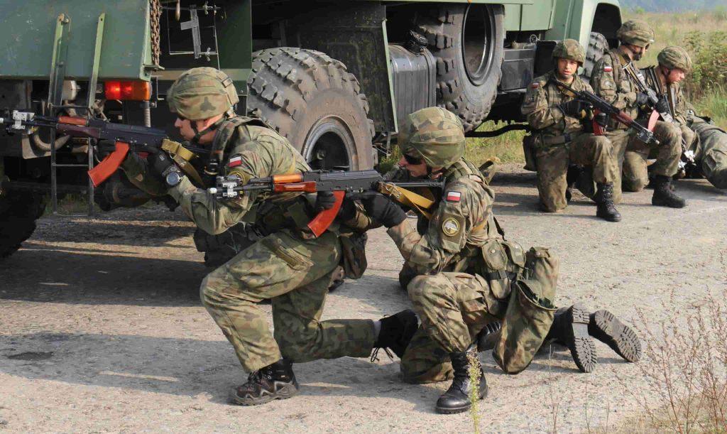 Pantera(パンテラ)|ポーランド軍の迷彩パターン