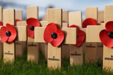 11月11日は戦没者追悼・退役軍人記念日