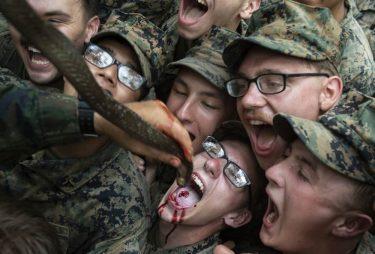 米海兵隊はコブラ・ゴールドにおいてコブラの生き血を飲むのを止めました